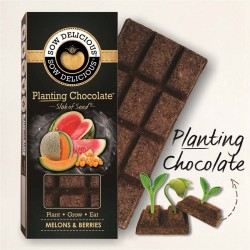 Planting Chocolate | Exotic Melons and Berries