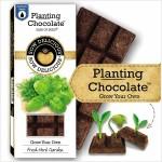 Planting Chocolate | Fresh Herb Garden