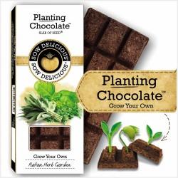 Planting Chocolate | Italian Herb Garden