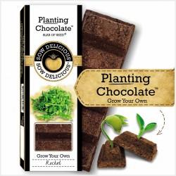 Planting Chocolate | Rocket