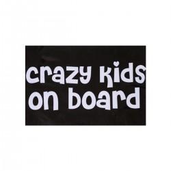 Crazy Kids on Board   VINYL STICKER