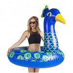 Pool Lilo | Peacock