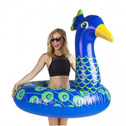 Pool Lilo | Peacock