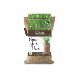 Grow Bag | Chives