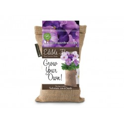 Grow Bag | Pansy  Lavender