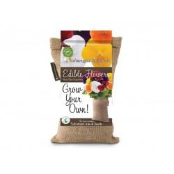 Grow Bag | Pancy Clear & Crystal