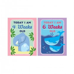Development Cards for Baby