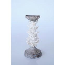 Coral Candle Stick | Medium