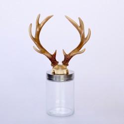 Antler Horns On Glass Jar
