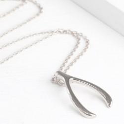 Dainty Wishbone Pendant on Silver Necklace