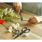 Garden Shears Set of 3
