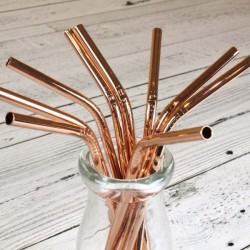 Set of 4 Eco-Straws STEEL - Rose Gold