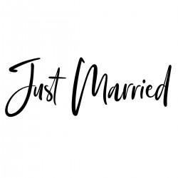 Just Married | VINYL STICKER